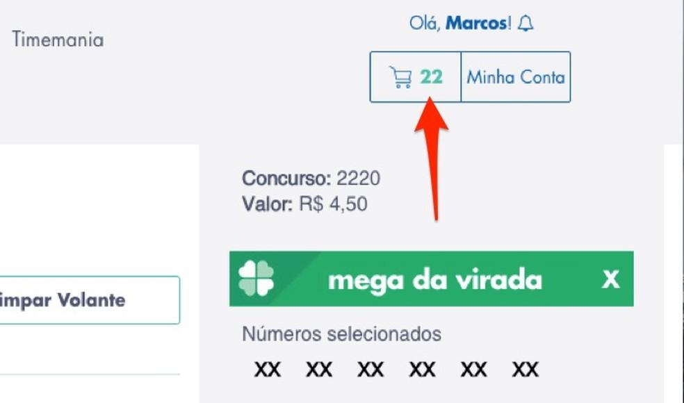 Millal avada rongid Loterias da Caixa veebisaidil salvestatud ennustustega Foto: Reproduo / Marvin Costa