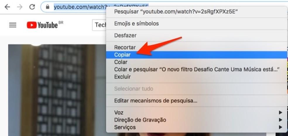 Kopeerige YouTube'i video URL brauseri aadressiribale Foto: Reproduo / Marvin Costa