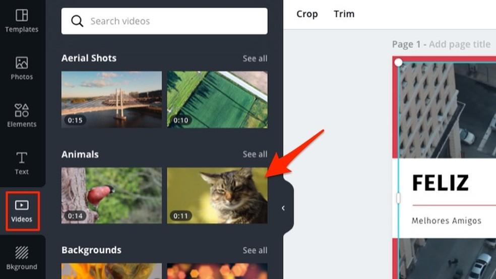 Canva veebisaidi redigeeritavas mallis kasutatud tasuta video muutmise meetmed Foto: Reproduction / Marvin Costa