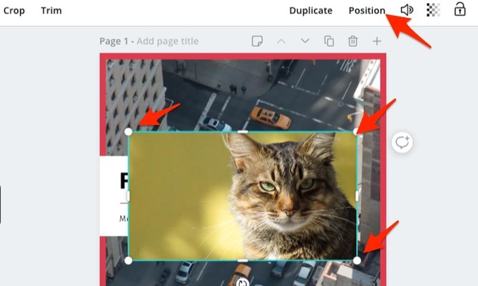 Canva Photo veebiteenuse kunstimudelisse kuuluvate videote suuruse muutmisel: Reproduo / Marvin Costa