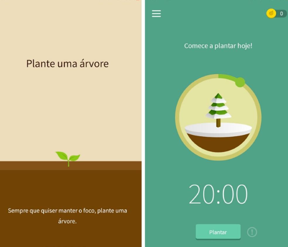 Mängusüsteemi abil on Forest rakendus, mis välistab virtuaalsed häired, et kasutajad saaksid keskenduda oma ülesannete täitmisele. Foto: reprodutseerimine / Graziela Silva