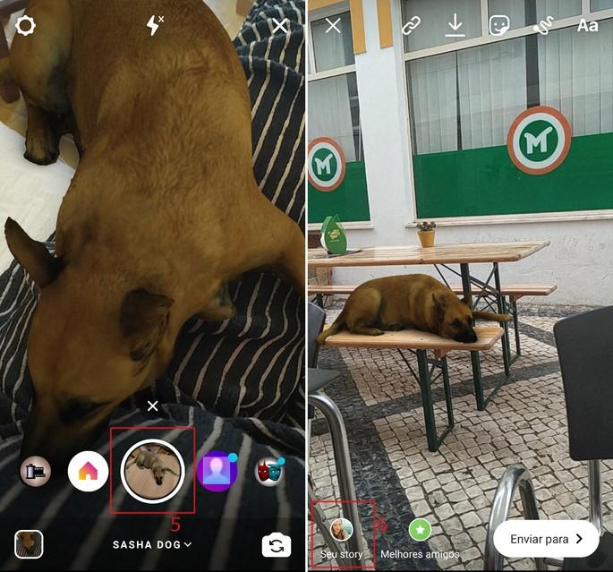 Sasha Dogi Instagrami filtrikoer