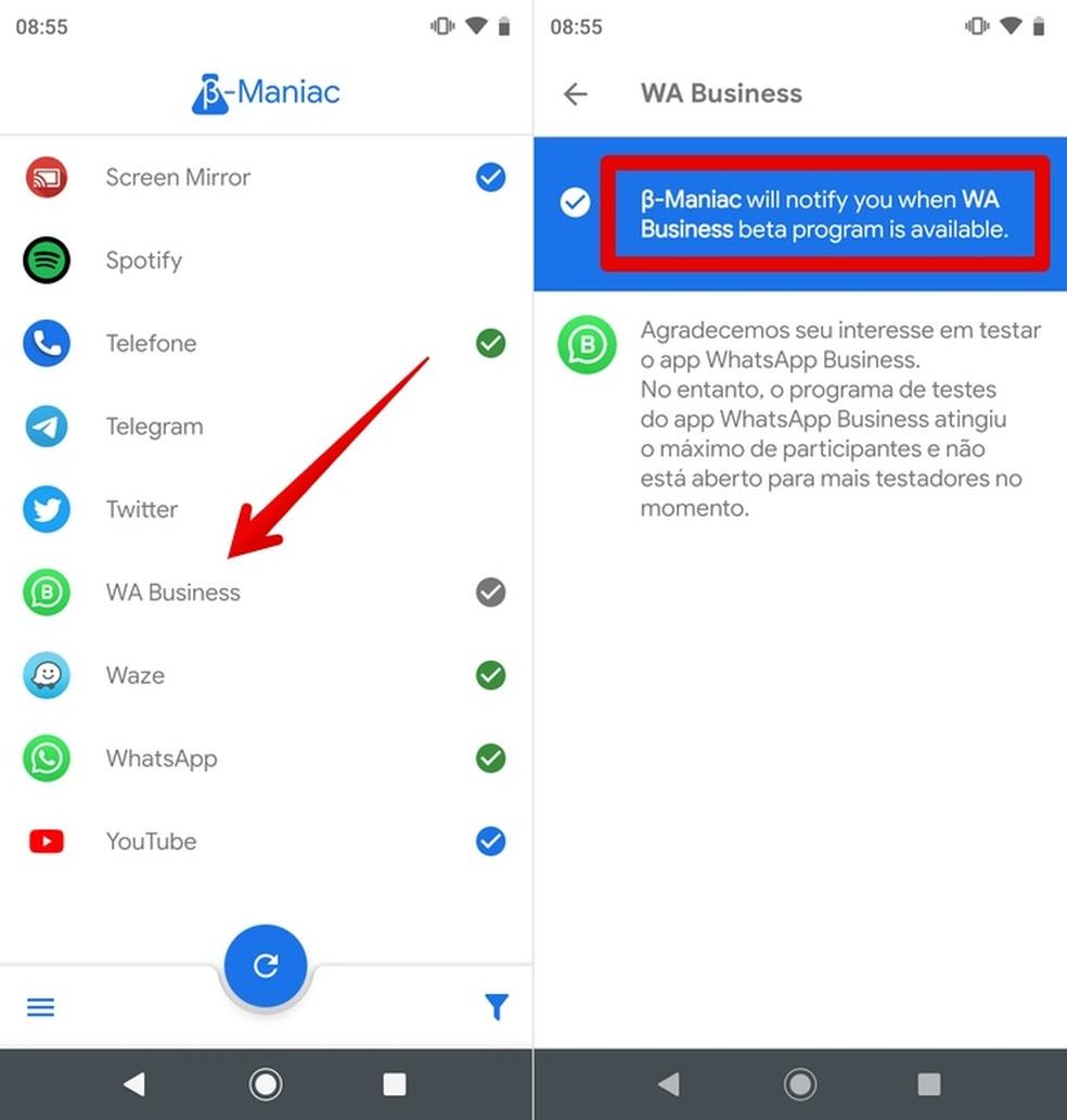 Testimisprogrammi sisenemiseks märguannete lubamine ja WhatsApp Beta uudiste ning muude rakenduste nautimine Foto: Reproduo / Helito Beggiora