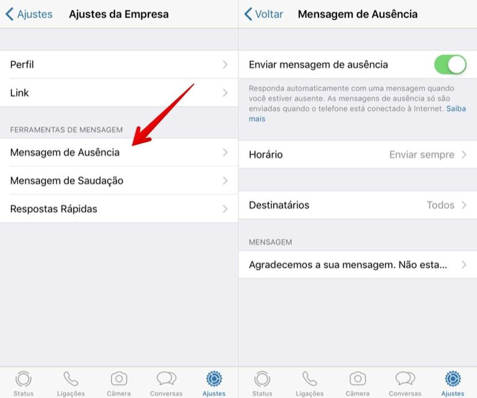 Seadistage WhatsApp Business Photo: automaatne kohalolijate teade: Reproduction / Helito Beggiora