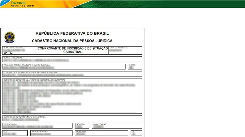 CNPJ-s registreerimise ja staatuse tõend avaldatakse IRS-i veebisaidil Foto: Reproduo / Rodrigo Fernandes