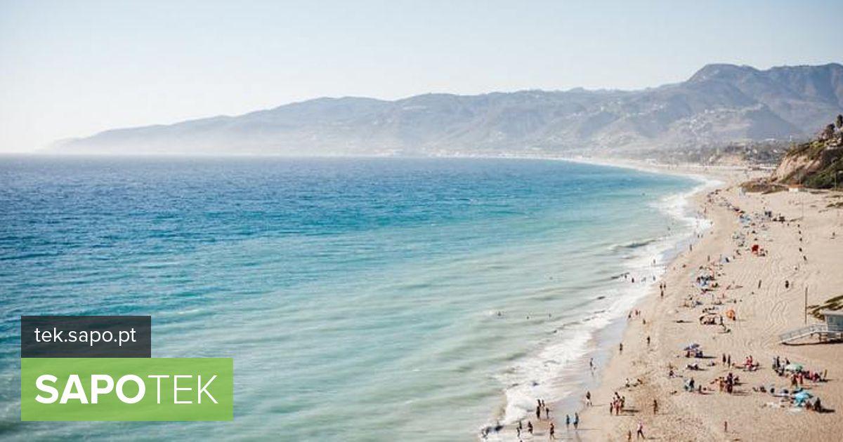 Praia Info: ühing, kes kaitseb õigust nõustada rakenduste installimist
