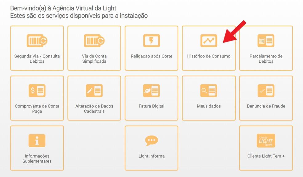 Tarbimisajaloo pakkumine on üks teenustest, mida pakub Light Virtual Agency Foto: Reproduo / Ana Letcia Loubak