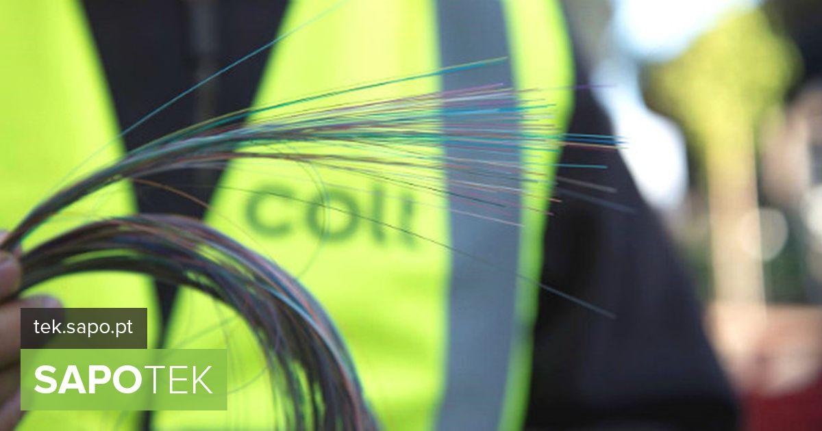 Colt Portugal lõpetas 2019. aasta kahekohalise kasvu ja 830 km installitud fiiberoptikaga