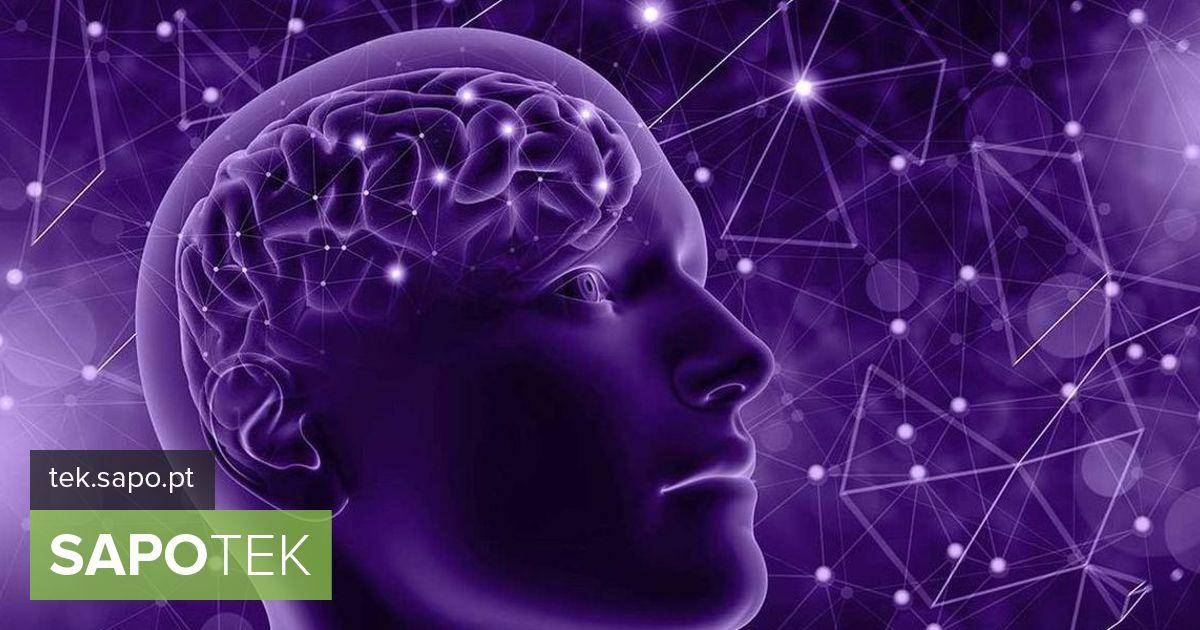 IBM soovib Alzheimeri tõvega võitlemiseks rakendada masinõppe tehnikaid