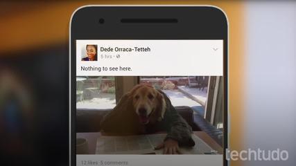 Neli vihatud Facebooki funktsiooni