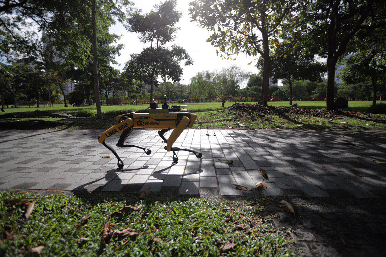 Laboritest kuni Singapuri parkideni: Spot aitab ametivõime võidelda COVID-19 vastu